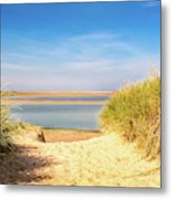 Through The Dunes Over To Budle Bay Metal Print