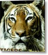 Tigers Mascot 4 Metal Print