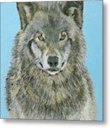 Timber Wolf 4 Metal Print