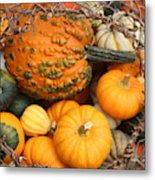 Time For Fall Metal Print