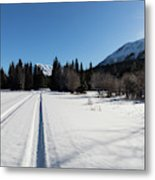 Tire Tracks In Snow In An Isolated Area Of The Kenai Peninsula Metal Print