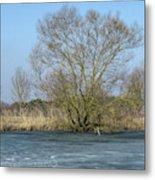 Tree On Frozen Lake Metal Print