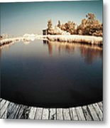 Trees And Plants In A Pond Metal Print