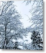 Trees With Snow Metal Print
