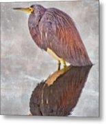 Tri-Color Heron Metal Print