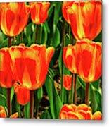 Tulips 2019d Metal Print