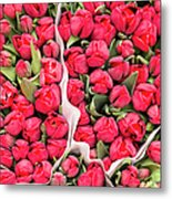 Tulips For Sale At A Flower Market Metal Print