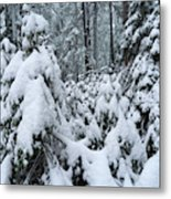 Under The Snow Metal Print