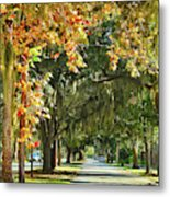 Connecting With Your Roots Metal Print