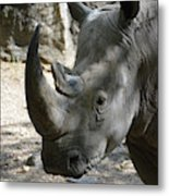 Up Close Look At The Face Of A Rhinoceros Metal Print