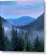 Upper Priest Lake Scenic Area Metal Print