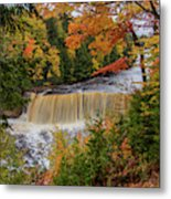 Upper Tahquamenon Autumn Colors -0007 Metal Print