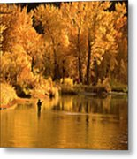 Usa, Idaho, Salmon River, Mature Man Metal Print