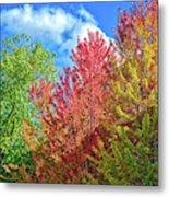 Vibrant Autumn Hues At Cornell University - Ithaca, New York Metal Print