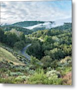 View Of Curved Road Through Dense Forest Area With Low Clouds Ov Metal Print