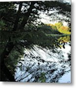 View Of The Lake Through The Branches Metal Print