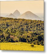 View To The Sunshine Coast Metal Print