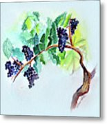 Vine And Branch Metal Print