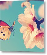 Vintage Spring Image With Butterfly And Metal Print
