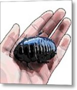 W Is For Wood Cockroach Metal Print