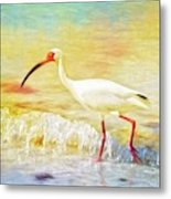 Walking The Waves Of Sanibel Metal Print