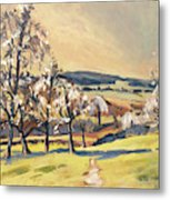 Warm Spring Light In The Fruit Orchard Metal Print
