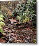 Washington Creek Metal Print