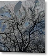 Wasteway Willow 04 Metal Print