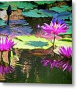 Water Lily 6 Metal Print