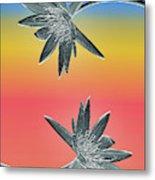 Water Lily Duo Metal Print