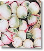 Watermelon Radishes And A Teeny Ear Of Corn Metal Print