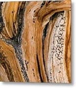 Weathered Wood Of Ancient Bristlecone Metal Print