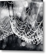 Weight Of Water Metal Print