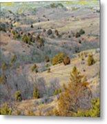 West Dakota Hills Reverie Metal Print
