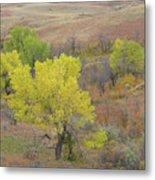 West Dakota September Splendor Metal Print