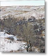 Western Edge Winter Hills Metal Print