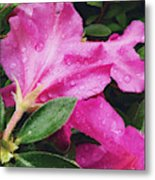 Wet Blooms Metal Print