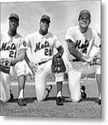What Could Be The New York Mets Metal Print