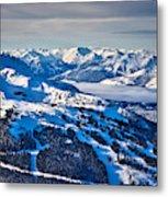 Whistler In Winter Metal Print