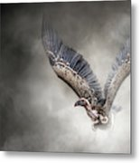 White-backed Vulture - In The Dust Metal Print
