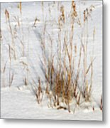 Whitehorse Winter Landscape Metal Print
