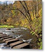 Whitewater River Scene 55 C Metal Print