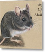 Wild Deer Mouse Metal Print