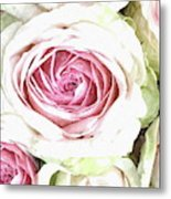 Wild Pink Roses Metal Print