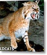 Wildcats Mascot 3 Metal Print