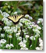 Wildflower Butterfly Metal Print