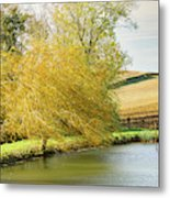 Wind In The Willow Metal Print