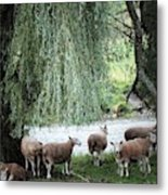 Wind In The Willows Metal Print