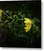 Windy Weeds Metal Print