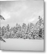 Winter Storm Anderson Pond Metal Print